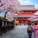 visite sportive de tokyo